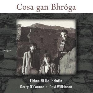 Eithne Ní Uallacháin, Gerry O'Connor, Desi Wilkinson 歌手頭像