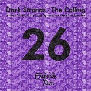 Dark Strands 歌手頭像