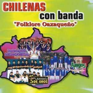 Banda Amigos de Don Tino Cortés, Banda 5 De Oros, Banda la Fiera de Gildo Zárate 歌手頭像