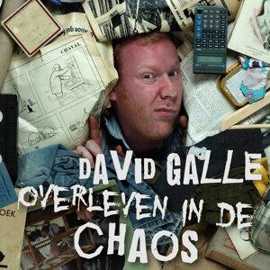 David Galle 歌手頭像