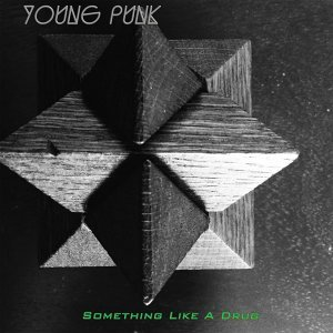 Young Punk 歌手頭像