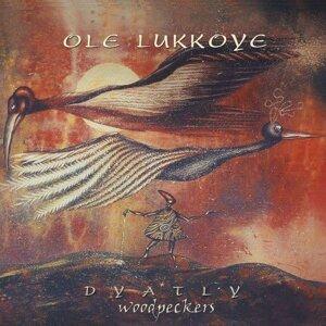 Ole Lukkoye 歌手頭像