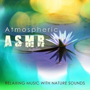 Relax & Atmospheric Music Maestro & Zen Music Club 歌手頭像