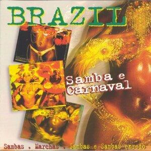 Samba e Carnaval 歌手頭像
