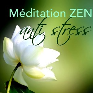 Meditation & Relaxation - Ambient & Anti Stress 歌手頭像