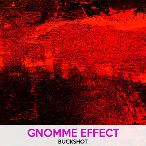 Gnomme Effect 歌手頭像