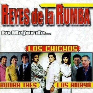 Los Chichos, Rumba Tres, Los Amaya 歌手頭像