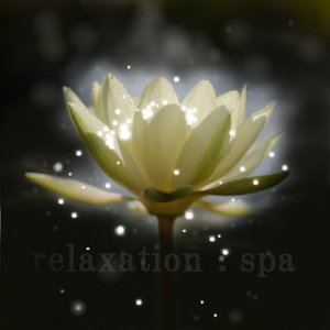 Relaxation spa 歌手頭像