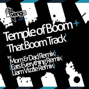 Temple of Boom 歌手頭像