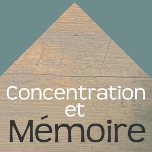 Concentration, Sound Therapy, Memory, Study Aid & Instrumental Piano Music & Détente & Relaxation 歌手頭像