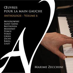 Maxime Zecchini 歌手頭像