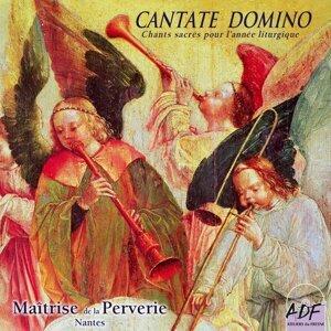 Michel Bourcier, Maîtrise de la Perverie de Nantes 歌手頭像