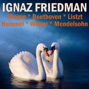 Ignaz Friedman 歌手頭像