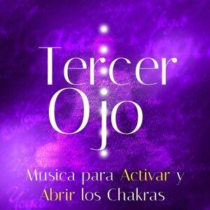 Musica Romantica Ensemble & Meditacion & Relaxation J. Trainer 歌手頭像