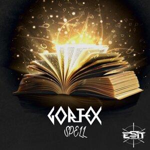Gortex 歌手頭像