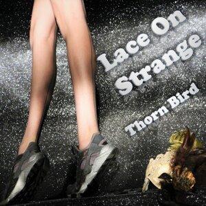 Lace On Strange 歌手頭像