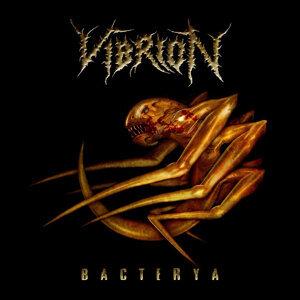 Vibrion 歌手頭像