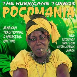 Hurricane Turbos 歌手頭像