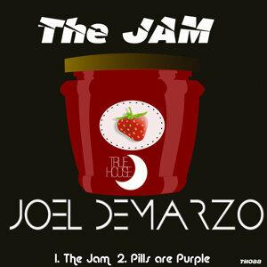 Joel DeMarzo 歌手頭像