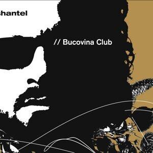 Bucovina Club 歌手頭像