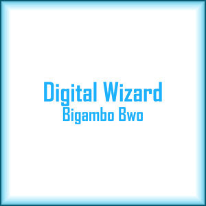 Digital Wizard 歌手頭像