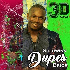 Sherwinn Dupes Brice 歌手頭像