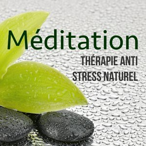 Meditation & Stress Relief Therapy & Musique Relaxante Univers & Musique d'Ambiance Ensemble 歌手頭像