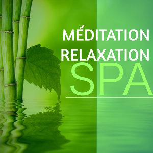 Asian Zen Spa Music Meditation & Relax & Zen Spa Music Relaxation Gamma 歌手頭像