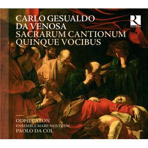 Liuwe Tamminga, Paolo da Col, Odhecaton, Ensemble Mare Nostrum 歌手頭像