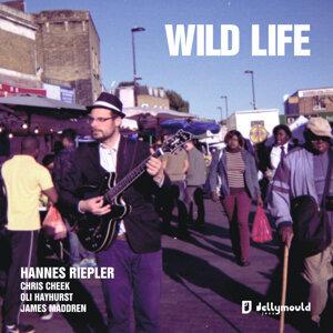 Hannes Riepler 歌手頭像