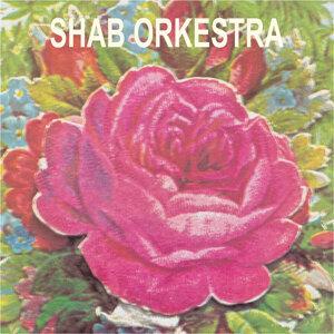 Shab Orkestra 歌手頭像