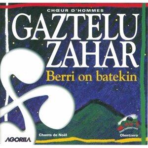 Gaztelu Zahar 歌手頭像