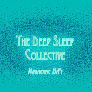 The Deep Sleep Collective 歌手頭像