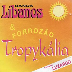 Banda Líbanos & Forrozão Tropykália 歌手頭像