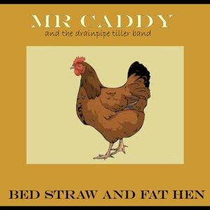 Mr Caddy, The Drainpipe Tiller Band 歌手頭像