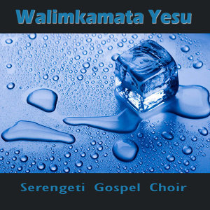 Serengeti Gospel Choir 歌手頭像
