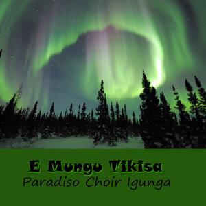 Paradiso Choir Igunga 歌手頭像