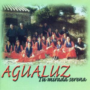 Agualuz 歌手頭像