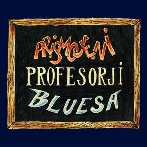 Prismojeni Profesorji Bluesa 歌手頭像