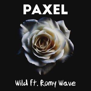 Paxel 歌手頭像