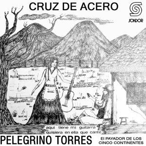 Pelegrino Torres 歌手頭像