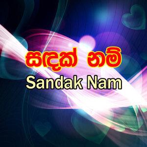 Janaka Wickramasinghe, Rohan Shantha Bulegoda, Harsha Bulathsinhala 歌手頭像
