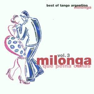 Milonga que peina canas (Milonga Vol. 3) 歌手頭像