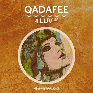 Qadafee 歌手頭像