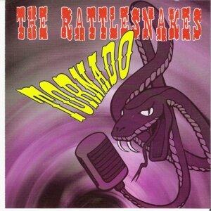 Rattlesnakes 歌手頭像