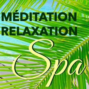 Relaxing Mindfulness Meditation Relaxation Maestro & Ambient Music Therapy & Yoga Relaxation Musi 歌手頭像