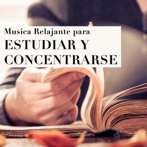 Musica Para Estudiar Academy & musica para estudiar & Calm Road 歌手頭像