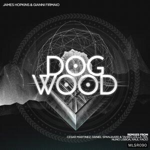 James Hopkins & Gianni Firmaio 歌手頭像