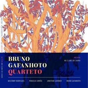 Brunho Gafanhoto Quarteto 歌手頭像