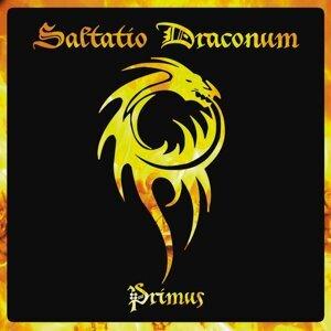 Saltatio Draconum 歌手頭像